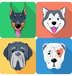 Set 9 dog head icon flat design vector