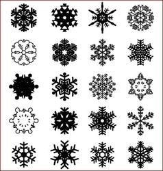 snowflakes on a white vector image