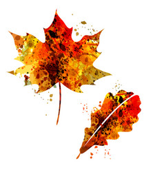 Watercolor silhouette of autumn leaves vector