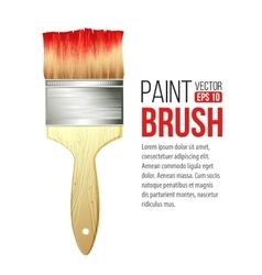 Paint Brushes isolated on white vector image vector image