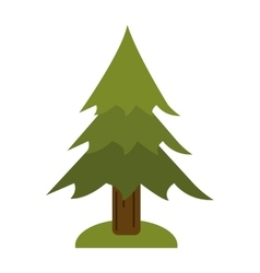 pine tree forest camping icon vector image vector image
