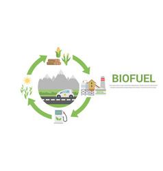 Biofuel life cycle vector