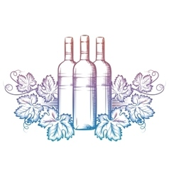 Wine bottle and grape leaves vector image