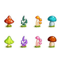 cartoon different mushrooms set colored vector image