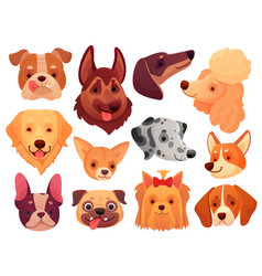 Cute dog face puppy pets dogs animals breed and vector