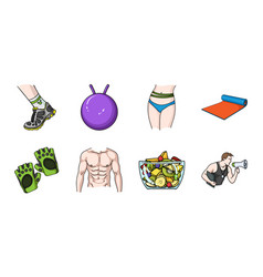 Fitness and attributes icons in set collection for vector