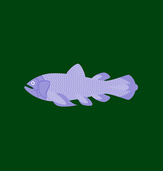 in flat style fish coelacanth vector image