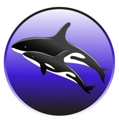 Killer whale swim in the ocean with a baby vector