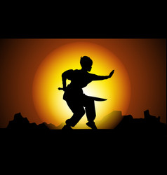kung fu in sunset vector image