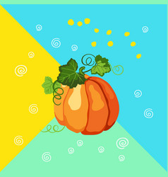 pumpkin with leaves on the multicolor background vector image
