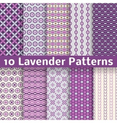 Lavender different seamless patterns vector image