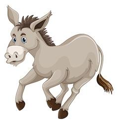 Donkey on white background vector