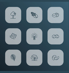 Landscape icons line style set with palm leaf vector