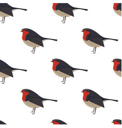 robin bird seamless pattern vector image