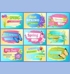 Set labels spring discounts advertisement stickers vector