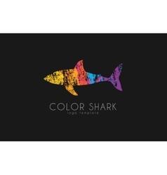 Shark logo Color shark Logo in grunge style vector image