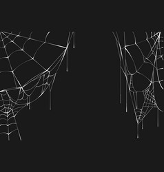 white spiderweb on black background vector image vector image