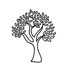 Olive tree isolated icon design vector