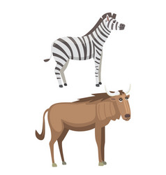 african animals cartoon set zebra safari vector image