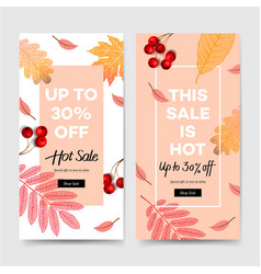 autumn sale fall banners collection social vector image