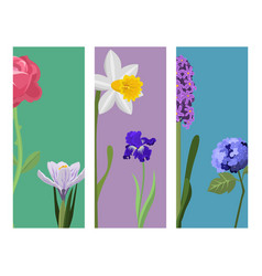 Beautiful spring flower botanical bloom painting vector