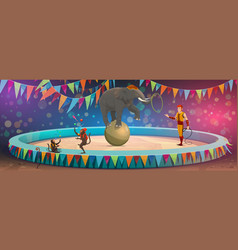 big top circus arena elephant on ball and monkeys vector image