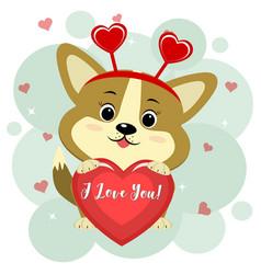 congratulations on valentine s day cute corgi vector image