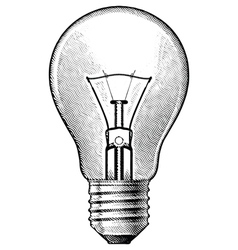 Figure bulbs vector image