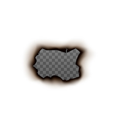 Hole on paper with burnt edge realistic vector