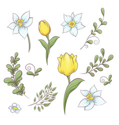 Set flowers tulips hand drawing vector