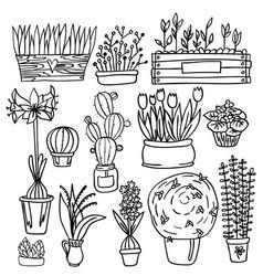 set of indoor plants vector image