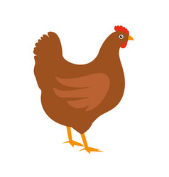 chicken icon flat style isolated on white vector image vector image
