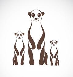 Image of an meerkats vector image