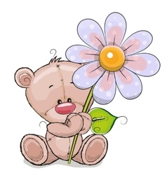Bear with flower vector