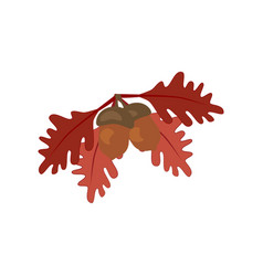 oak leaf and acorn vector image