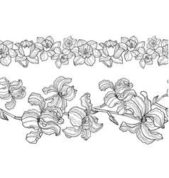 set seamless floral borders iris and narcissus vector image