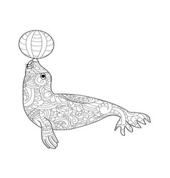 fur seal coloring for adults vector image vector image