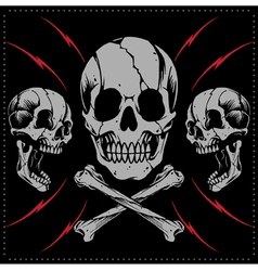 Skulls and Bone cross vector image