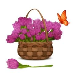 Tulip flowers in basket vector image vector image