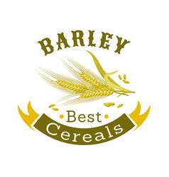 barley grain badge for food packaging design vector image