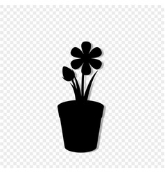 black silhouette of flower in the pot isolated vector image