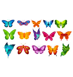 Bright colors butterflies vector