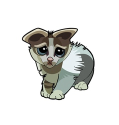 Cartoon kitten unhappy vector