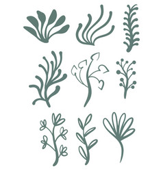 hand drawn green floral lines set vector image