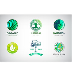 set nature eco environment logos vector image