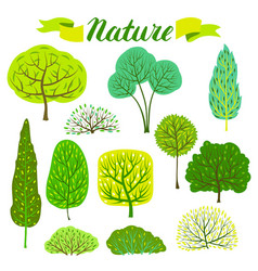 set of spring or summer abstract stylized trees vector image