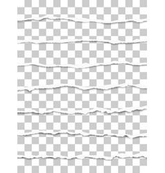 Seven oblong torn transparent paper fragments vector