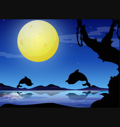 silhouette background scene with dolphin at night vector image