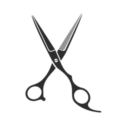 Vintage barber shop scissors vector image