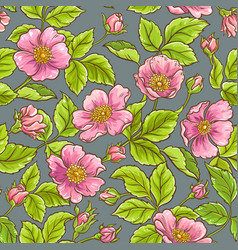 Wild rose flowers pattern vector